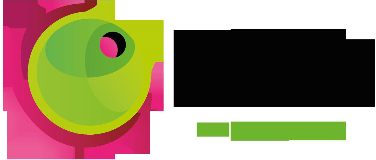 Aceituna Mecánica - Agencia Marketing Digital Cádiz
